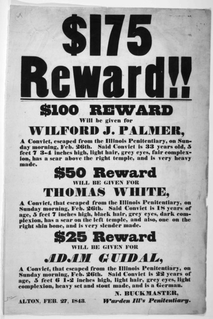 $175 reward!! $100 reward will be given for Wilford J. Palmer, a convict escaped from the Illinois Penitentiary ... $50 reward will be given for Thomas White, a convict, that escaped from the Illinois Penitentiary ... {dolla