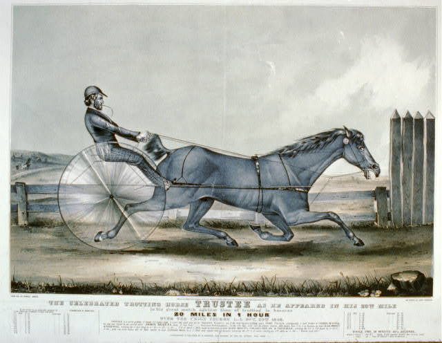 The celebrated trotting horse trustee as he appeared in his 20th mile: In his great match against time of trotting harness 20 miles in 1 hour over the union course L.I. Oct. 20th 1848