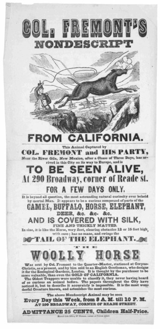 Col. Fremont's nondescript from California. This animal captured by Col. Fremont and his party, near the River Gila, New Mexico, after a chase of three days, has arrived in this city on its way to Europe, and is to be seen alive at 290 broadway,
