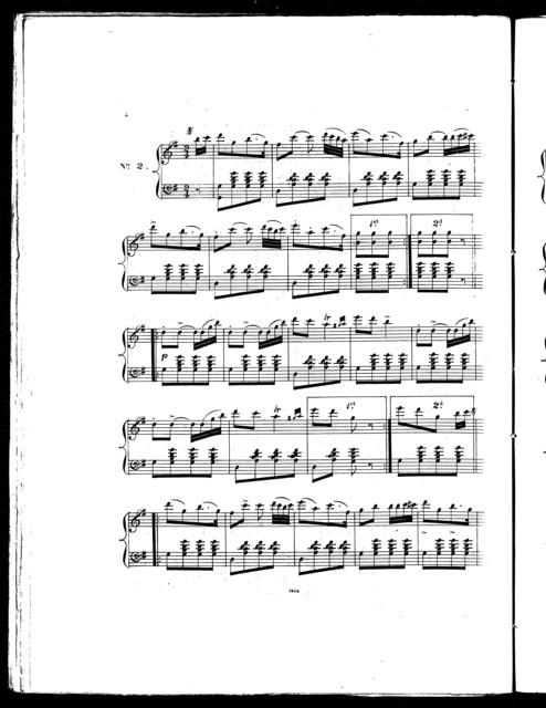Golden lyre schottisches