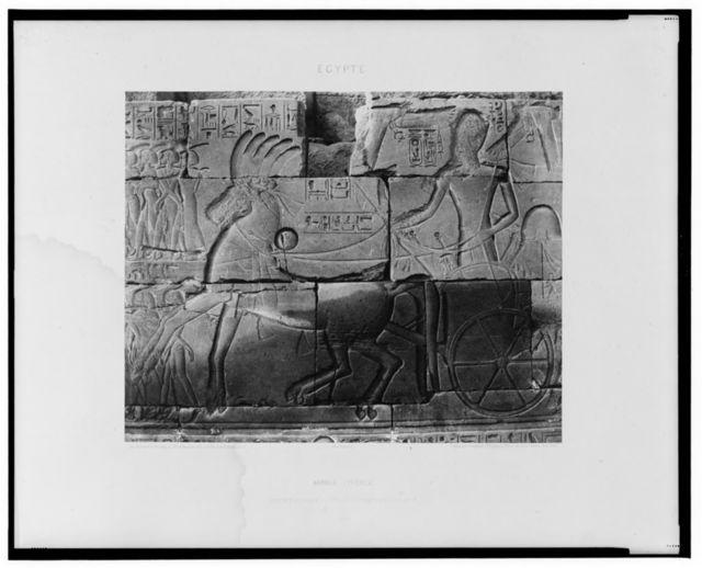 Karnak (Thèbes) - enceinte du palais - détails de sculptures, au point N / Félix Teynard.