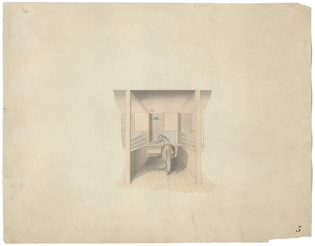 [Government Hospital for the Insane (Saint Elizabeths Hospital), Washington, D.C. Stable interior with horse in stall]