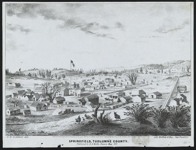 Springfield, Tuolumne County / G. H. Goddard, del., lith. Britton & Rey, San Francisco.