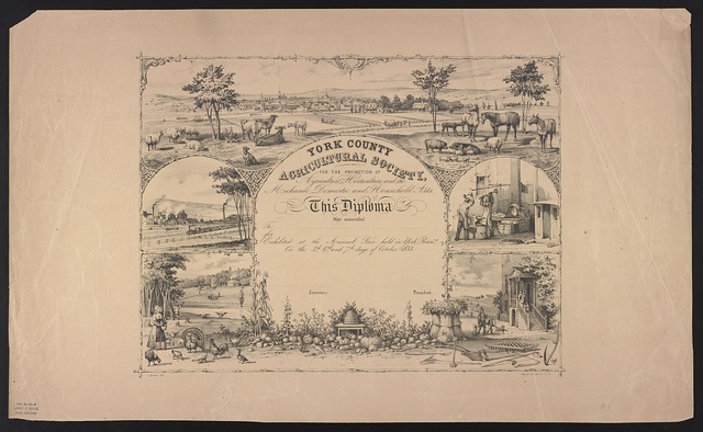 York County Agricultural Society, for the promotion of agriculture, horticulture, and the mechanic, domestic, and household arts / J. Queen delt. ; lith. of P.S. Duval & Co.