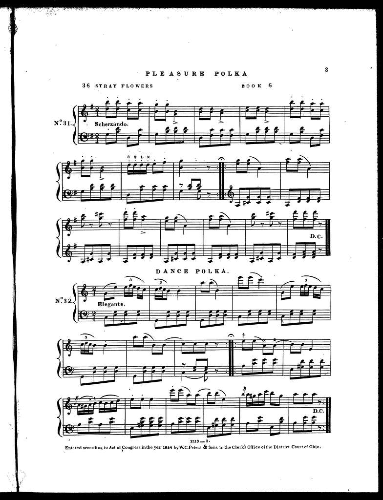 Pleasure polka -- Dance polka -- Opera waltz -- Aurora waltz -- Air from Elisire d'amore -- Carnival of Venice