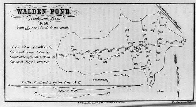 Walden Pond--A reduced plan, 1846