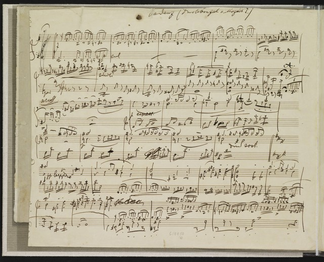 Cadenzas to concertos by J.S. Bach and W.A. Mozart