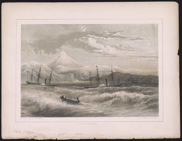Bay of Wodowara / from nature by Heine[,] shipping by Walke ; lith. of Sarony & Co. New York.