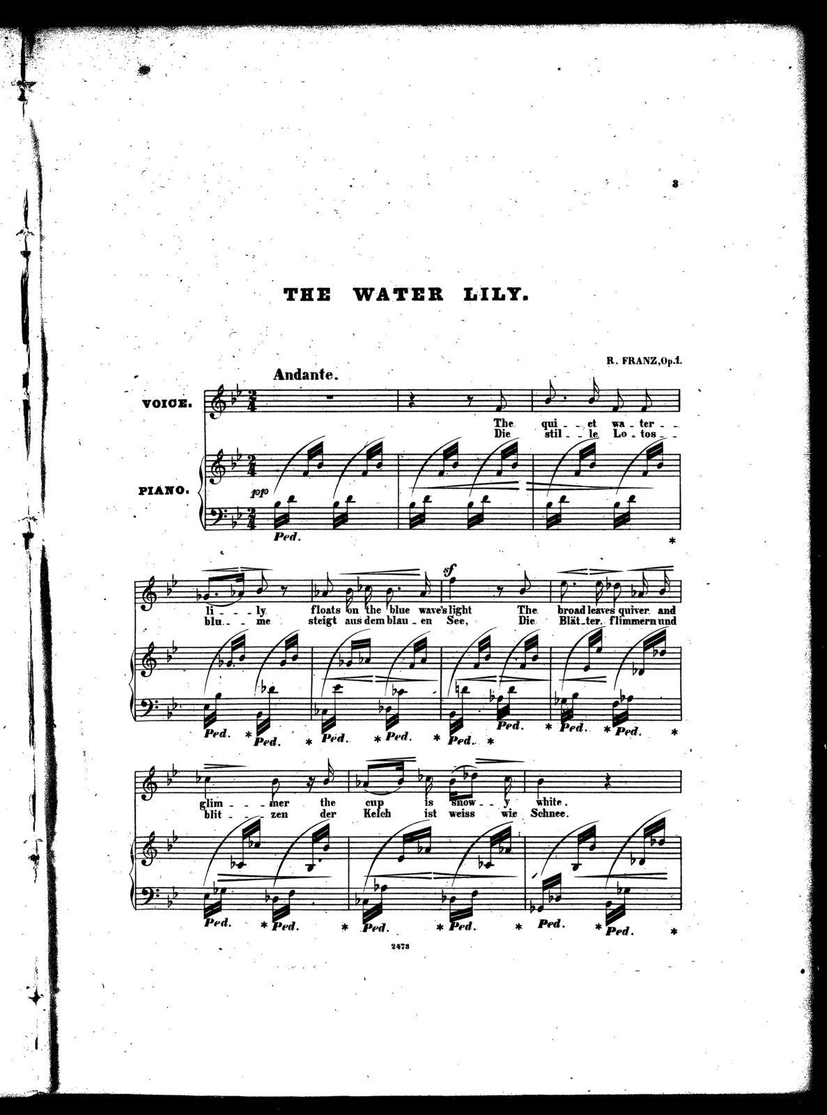 The  water lily, op. 1