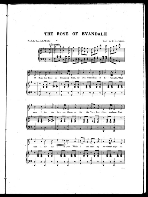 The  rose of Evandale