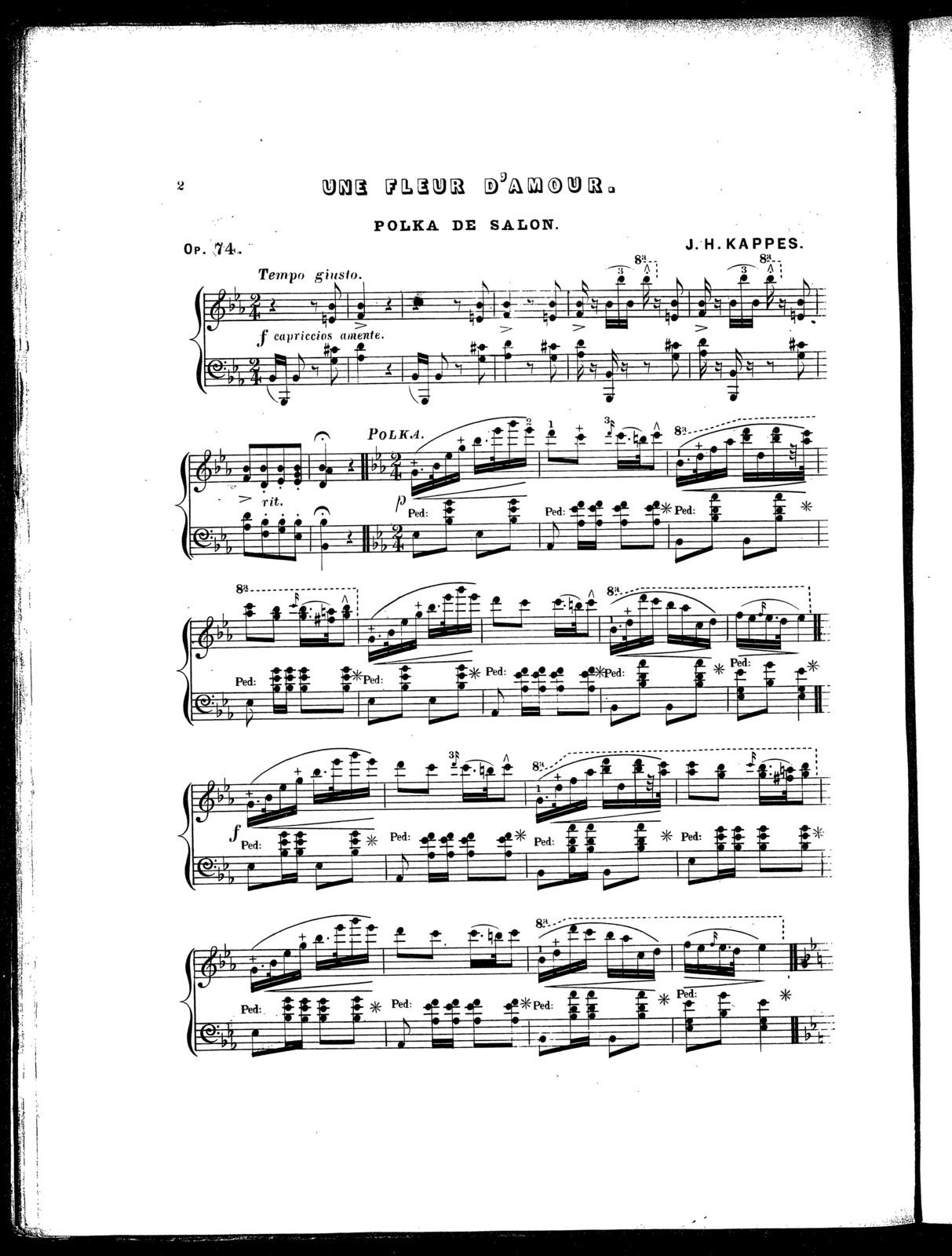 Une Fleur D Amour Polka De Salon Op 74 Picryl