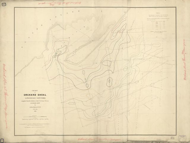 Chart of Orchard Shoal, Lower Bay, New-York /