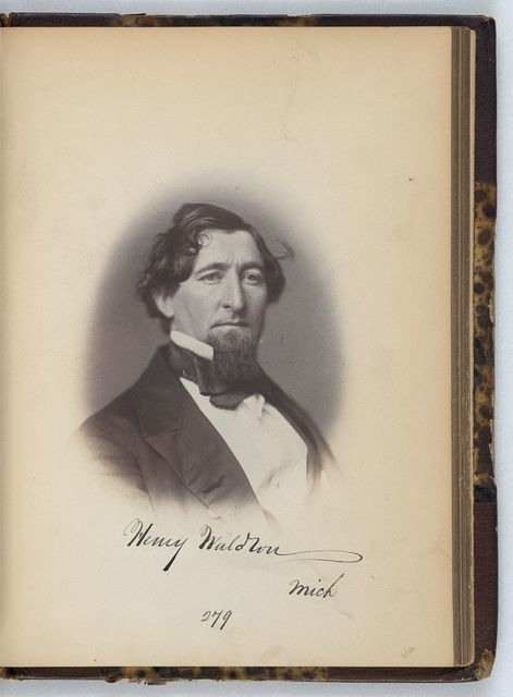 [Henry Waldron, Representative from Michigan, Thirty-fifth Congress, half-length portrait]