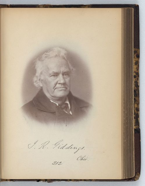 [Joshua R. Giddings, Representative from Ohio, Thirty-fifth Congress, half-length portrait]