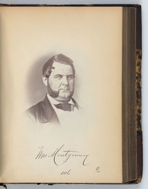 [William Montgomery, Representative from Pennsylvania, Thirty-fifth Congress, half-length portrait]