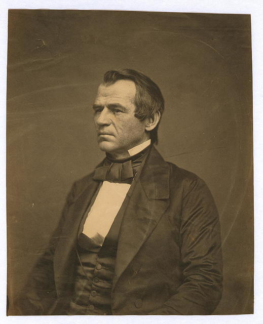 [Andrew Johnson, half-length portrait, seated, facing left]