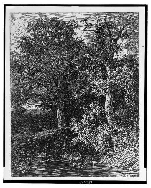 Crépuscule (Old Crome) / Lalanne.