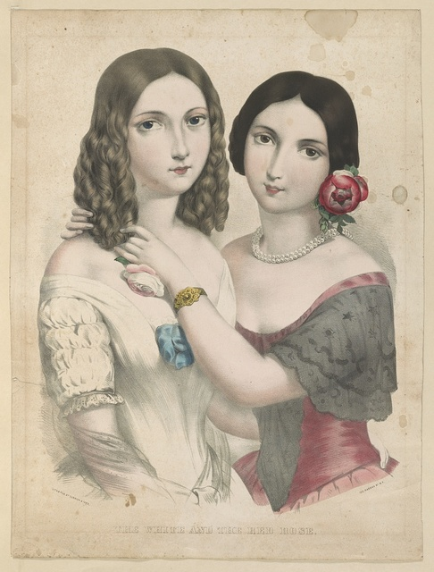 The white and the red rose / lith. & pub. by Currier & Ives.