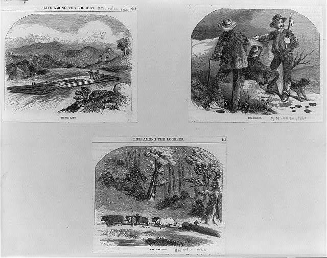 [Three illustrations: 1. Timber raft; 2. Lumbermen; 3. Hauling logs by oxen]