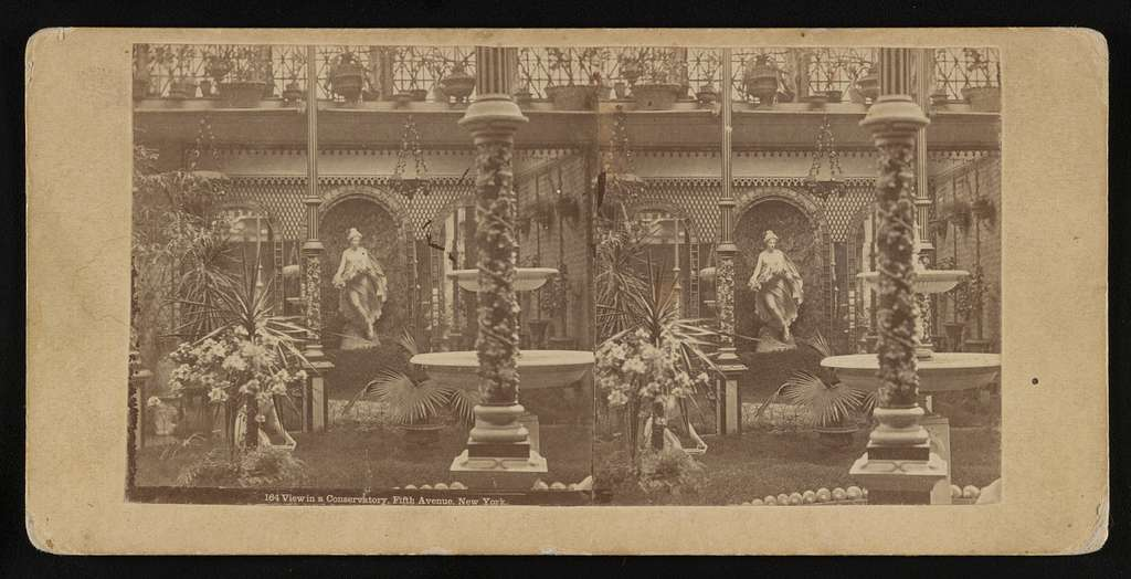 View in a Conservatory, Fifth Avenue, New York