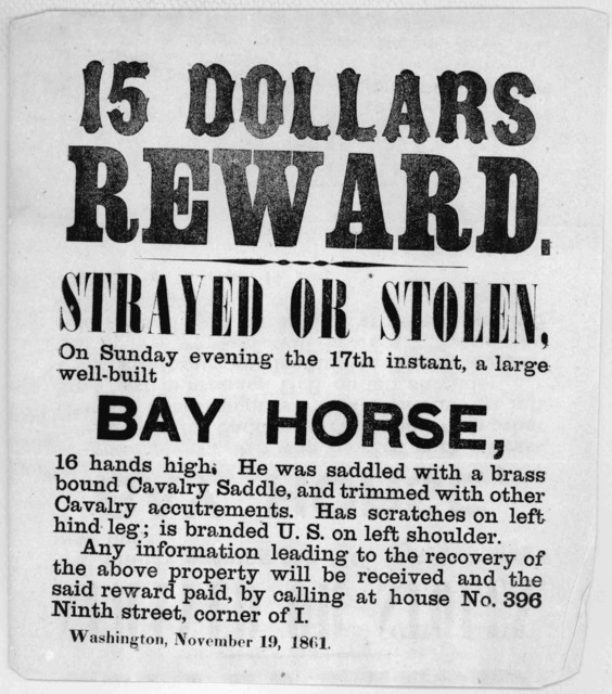 15 dollars reward. Strayed or stolen, on Sunday evening the 17th instant, a large well-built bay horse, 16 hands high ... Any information leading to the recovery of the above property will be received and the said reward paid, by calling at hous