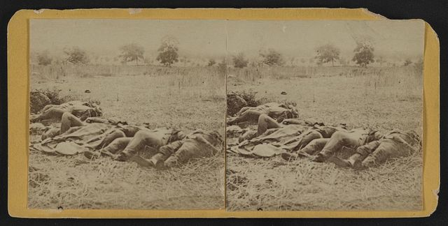 [Dead soldiers lying side by side in a field]