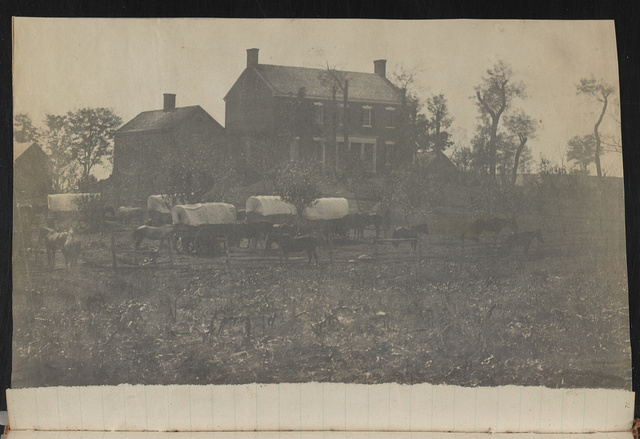 [Horses and covered wagons in front of two-chimney brick house and outbuildings, probably at Camp Griffin, Langley, Virginia]