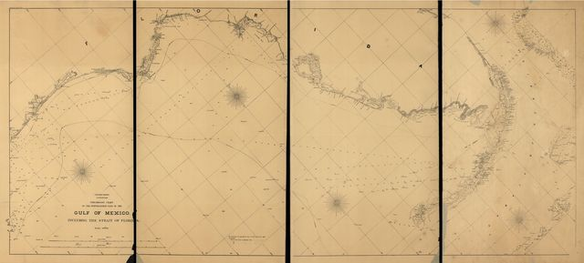 Preliminary chart of the northeastern part of the Gulf of Mexico, including the Strait of Florida. Autographic transfer 1861.