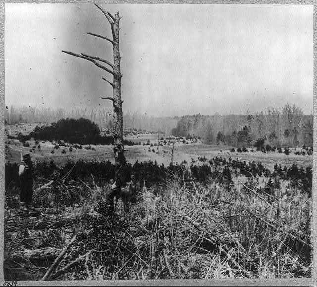 Scene of unsuccessful charges against Confederate entrenchments at junction of old and new Court House Roads