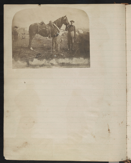 [Union teamster or hostler with horse, probably with the 2nd Vermont Infantry Regiment at Camp Griffin, Langley, Virginia]