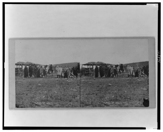 [Group of Native Americans (possibly Winnebago) wearing blankets, some standing before log fence, others sitting, canopied shelter in background]
