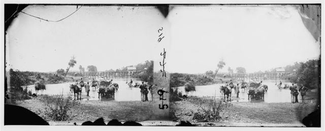 Rappahannock River, Virginia. Fugitive Negroes fording the Rappahannock. (During Pope's retreat)