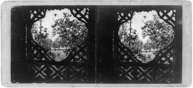"A visit to the ""Central Park"" in the summer of 1863 / photo by Thos. C. Roche."
