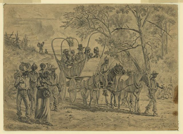 [African American refugees coming into the Union lines near Culpeper Court House, Va.]