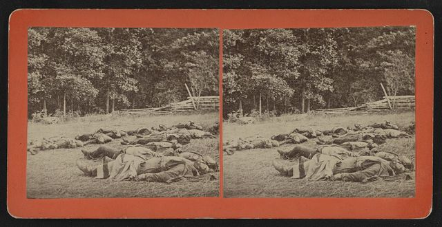 [Confederate dead gathered for burial at the southwestern edge of the Rose woods, Gettysburg, Pa., July 5, 1863]