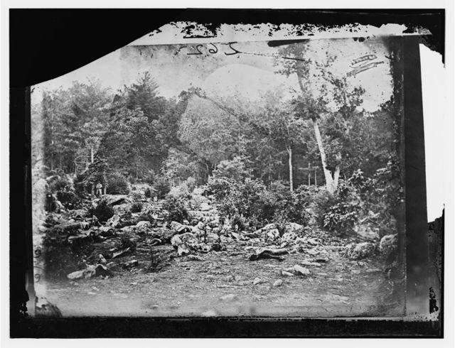 """Gettysburg, Pennsylvania. """"Slaughter pen"""" on left wing"""