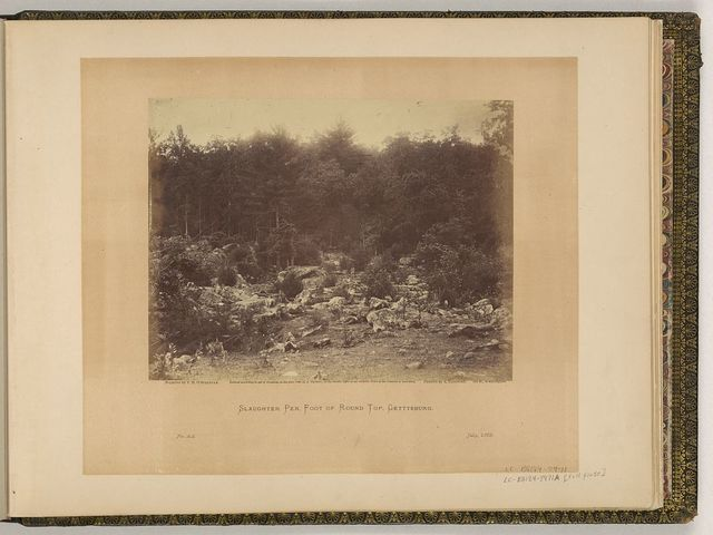 Slaughter pen, foot of Round Top, Gettysburg / negative by T.H. O'Sullivan. positive by A. Gardner.