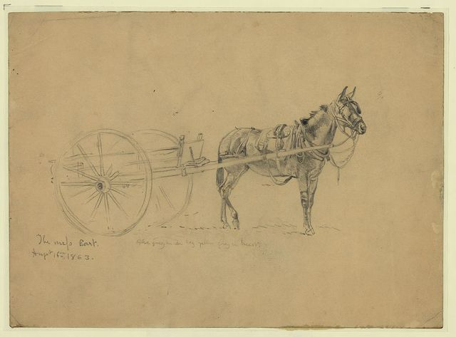 The mess cart. Aug. 6, 1863