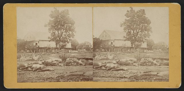 View at Losser's (i.e. Trostle's) barn, where the 9th Massachusetts Battery was cut up