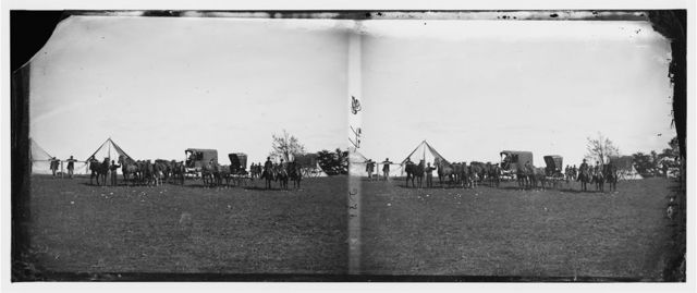 Virginia. Army of the Potomac. Wagons and horses attached to repair Department in charge of Captain Pierce