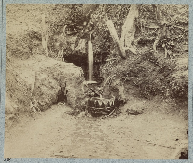 Battlefield of Chickasaw Bayou, Miss. The Poison Spring, February, 1864