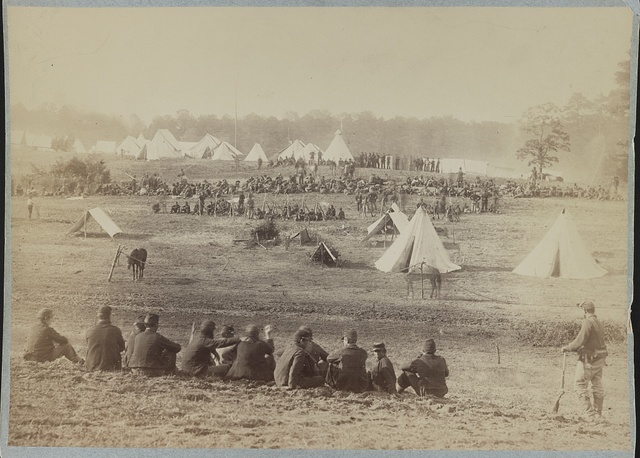Confederate prisoners captured at the battle of Fisher's Hill, VA. Sent to the rear under guard of Union troops