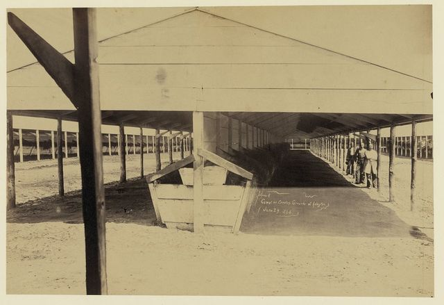 Interior of corral on cemetery grounds at Arlington