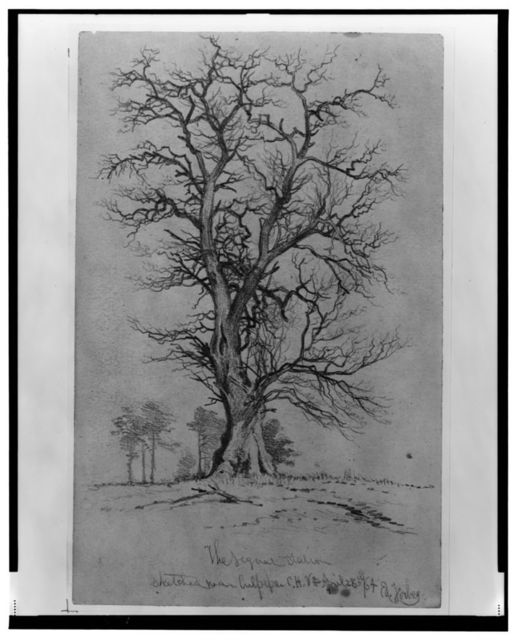 The signal station sketched near Culpeper C.H., Va. / Ed. Forbes