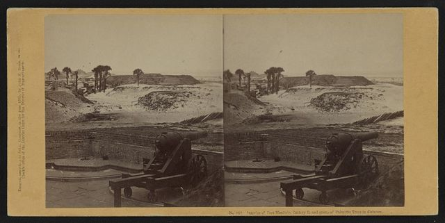 Interior of Fort Moultrie, Battery B. and group of palmetto trees in distance