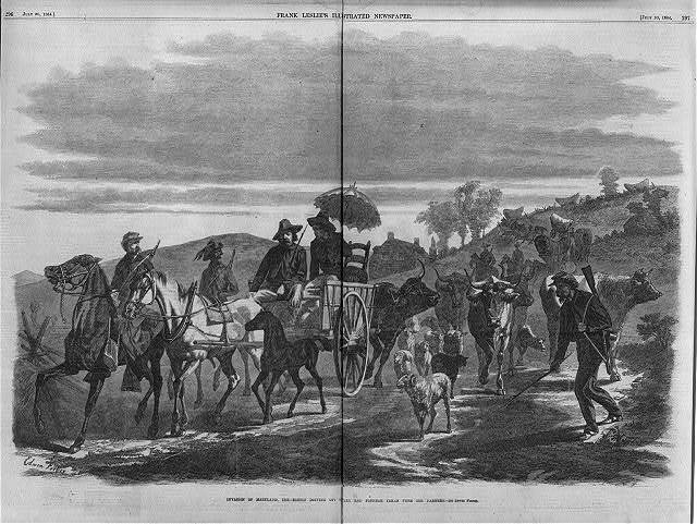 Invasion of Maryland, 1864 - Rebels driving off cattle and plunder taken from farmers