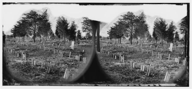 [Richmond, Va. Graves of Confederate soldiers in Oakwood Cemetery, with board markers]