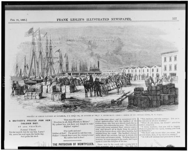 Shipment of cotton at Savannah, for New York, on account of the U.S. Government / from a sketch by our special artist, W.T. Crane.