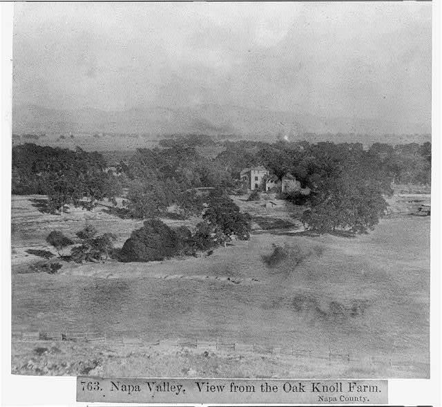 Napa Valley - view from the Oak Knoll Farm, Napa County