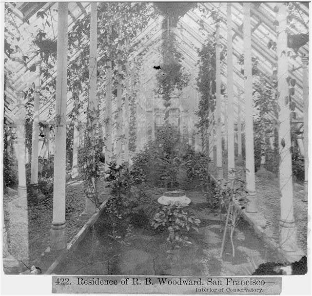 Residence of R.B. Woodward, San Francisco--interior of Conservatory